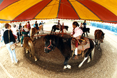 6-pony-ride-corporate-event-entertainment-marshal-steves-pony-rides-ny-nj-pa-nc