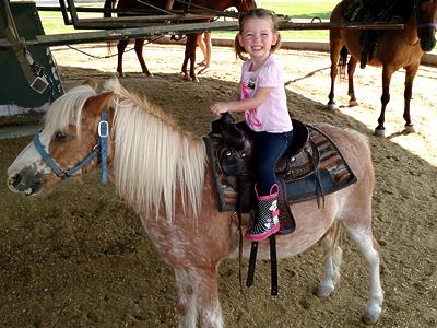 pony-rides-fairs-nj-pa-ny-marshal-steves-pony-rides