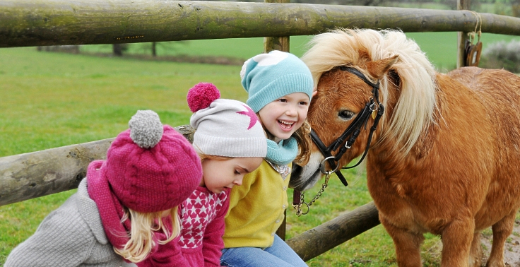 happy-children-marshal-steves-pony-rides-nj-ny-pa-nc